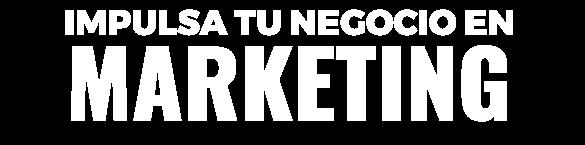 Impulsa tu empresa en Marketing
